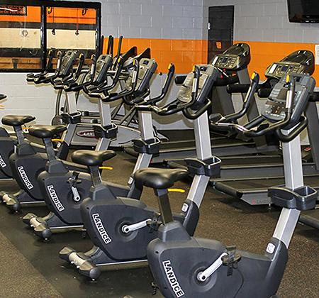 Rows of exercise machines